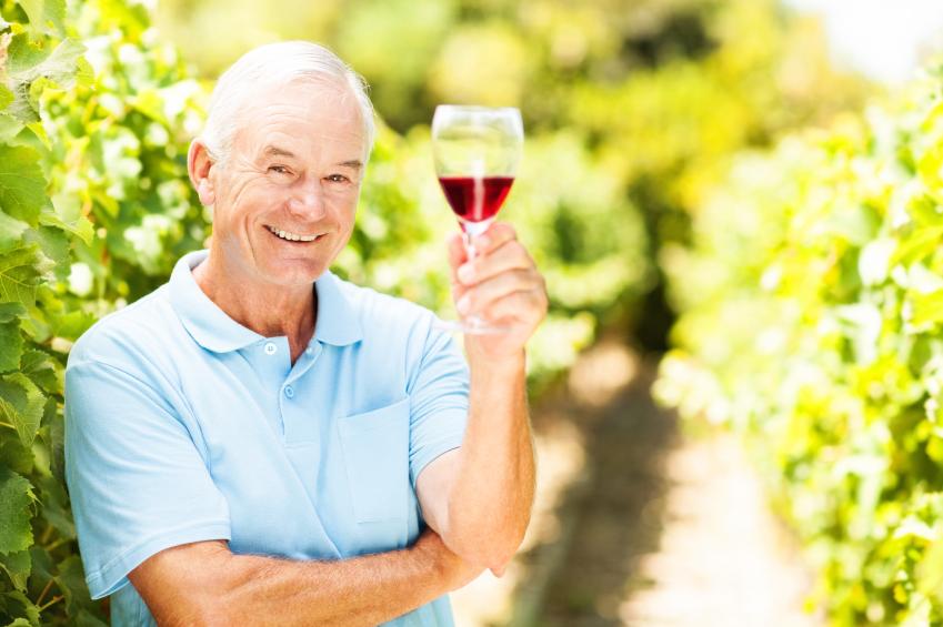 Smiling Senior Farmer Holding Wineglass In Vineyard