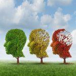 Le corps en entier serait responsable de l'Alzheimer