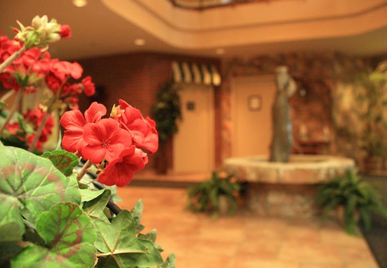 Fleurs à l'entrée